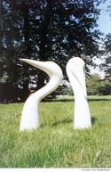 Abbildung: Weiße Vögel