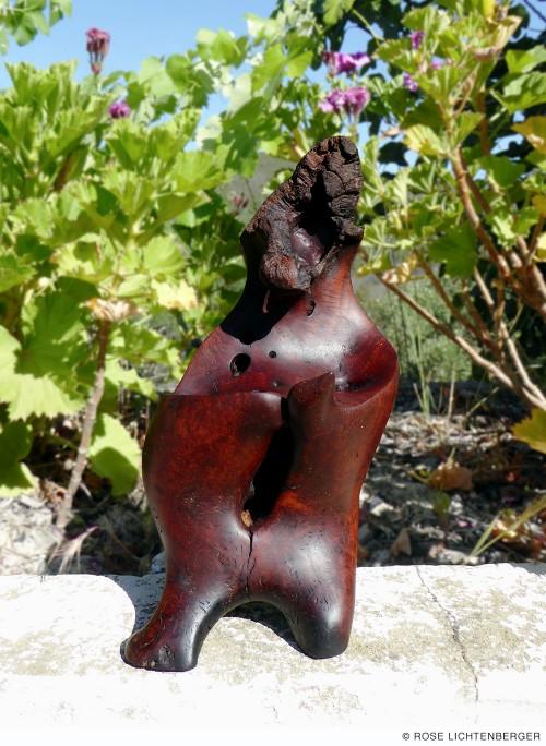 Abbildung: Tanzbär