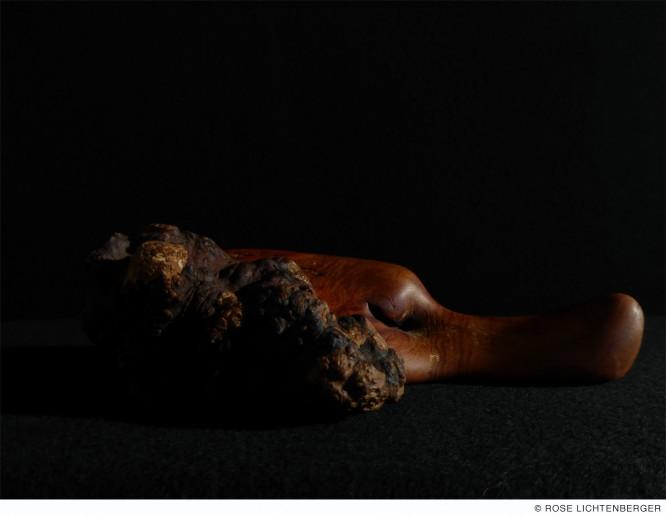 Abbildung: Schlafender Hund