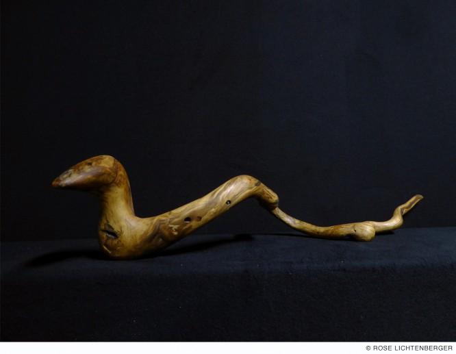 Abbildung: Schlange