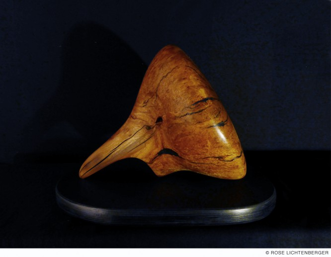 Abbildung: Der Schnüffler