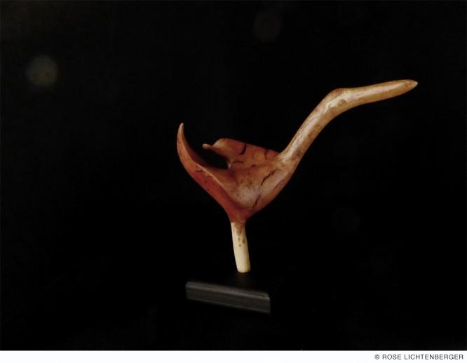 Abbildung: Stelzenvogel