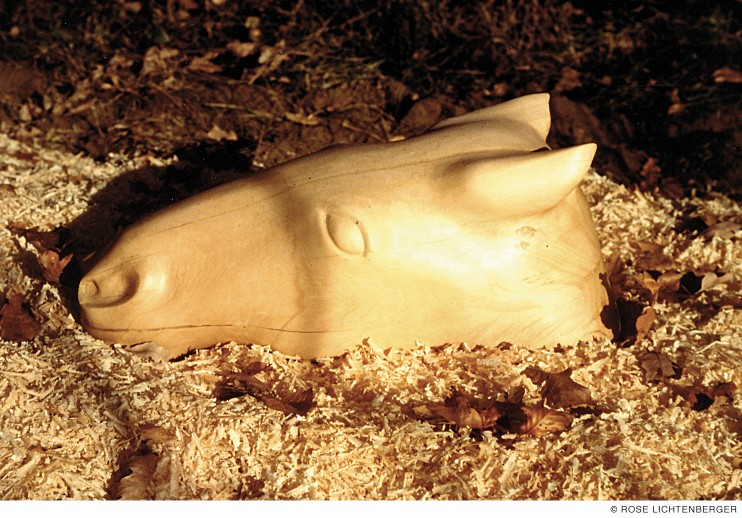 Abbildung: Pferdekopf